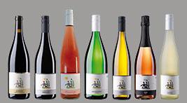 Weinbau Weine