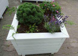 Grau Blumenkasten Quadrat bepflanzt