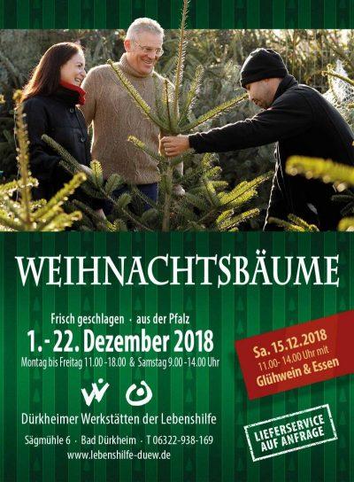 Weihnachtsbaumverkauf in Bad Dürkheim