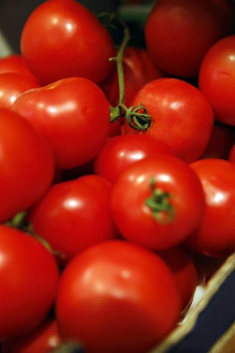 Leprima Biomarkt Bad Dürkheim Tomaten